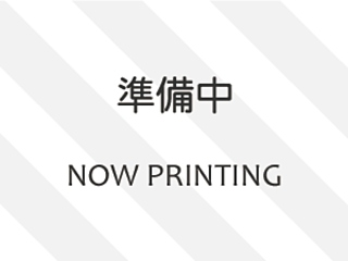 MITSUBISHI PAJERO W Long Active Field ED с аукциона в Японии